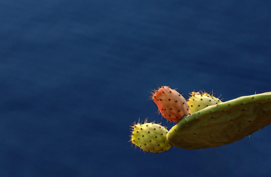 Fotografie Sicilia Bedda, natura e paesaggio…