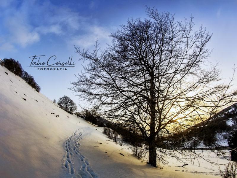 Fabio Corselli - Tramonto sulla Neve